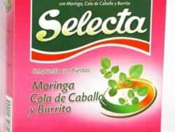 Selecta Moringa Yerba Mate
